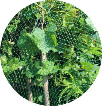 Vogelschutznetz Laubschutznetz Netz bis 800 m²